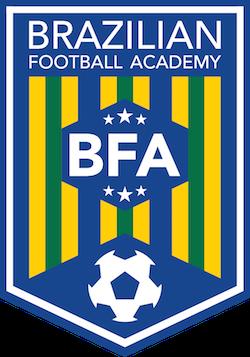 Brazilian Football Academy Icon