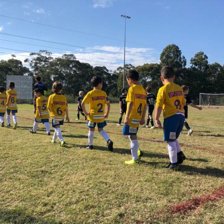 Brazilian Football Academy